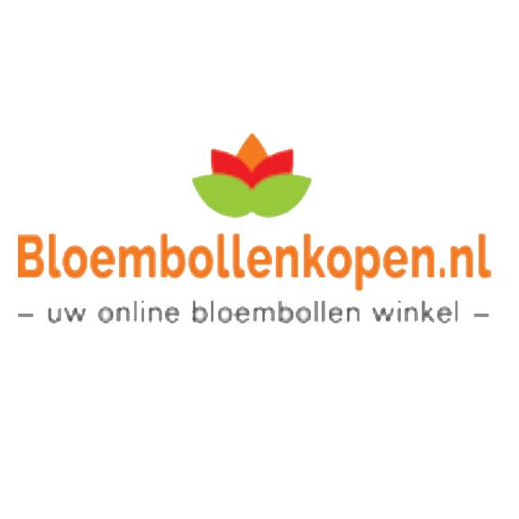 20% Rabatt bei Blumenzwiebelnversand.de