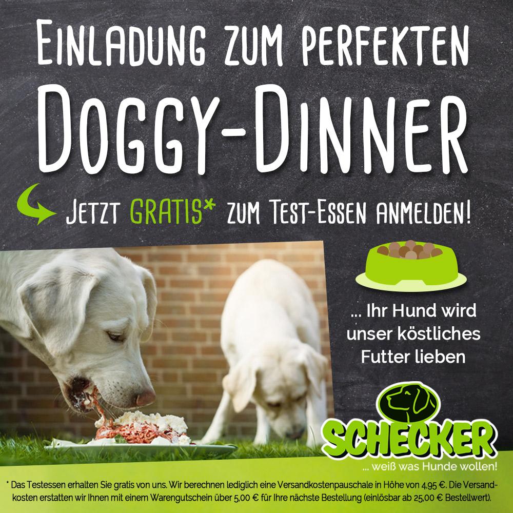 Doggy-dinner Gutscheine