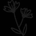 Flowercard Gutscheine