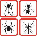 Insect-free Gutscheine