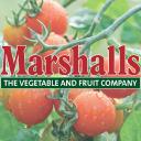 Marshalls-seeds Gutscheine