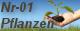 Nr-01 Gutscheine