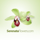 Serenataflowers Gutscheine