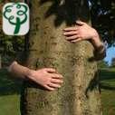 Tree2mydoor Gutscheine