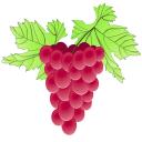 Weinfreund Gutscheine